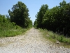 Tanglefoot Trail Algoma