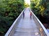 bridge & creek