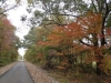 More Trail color